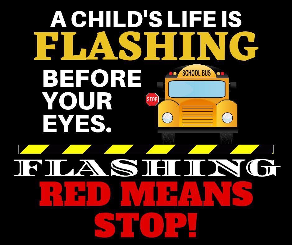 A Child's Life is Flashing before your eyes. Flashing Red Means STOP! image